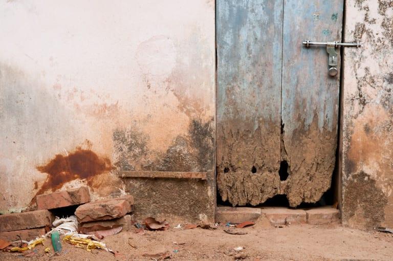 Termite-infestation-768x510